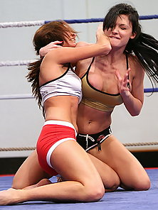 Grappling and wrestling starts among the bitches