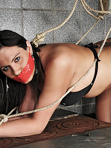 Shemale submissive tied and taped for action