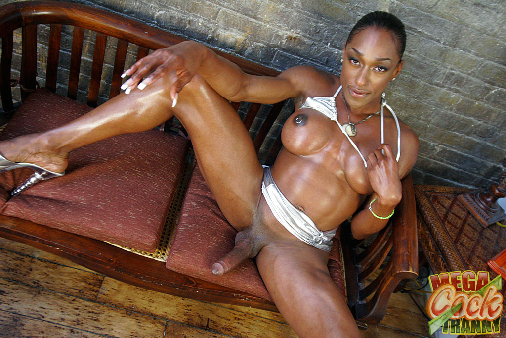 big juicy black shemale cock - Voloptous black shemale stroking her cock and playing with her tits