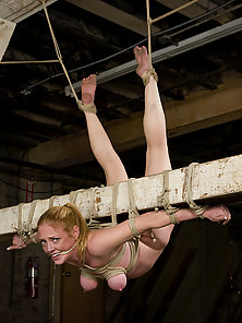 Bondage at it's most extreme, shaved slut suffers at Hogtied.com
